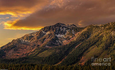 Mellow Yellow - Mount Tallac Golden Hour by Mitch Shindelbower