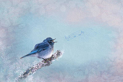 Bringing The Outdoors In - Mountain Bluebird Music by Patti Deters