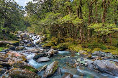 Staff Picks Judy Bernier - Mountain Stream in New Zealand by Alexey Stiop