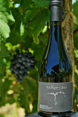 Photograph - Mourvedre William Chris Vineyards by Miguel Lecuona