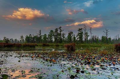 Photograph - Mullica River Sunset - Pinelands by Louis Dallara