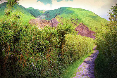 Reptiles - Mysterious valley volcanic crater lies in Taipei Taiwan Photography 3 by Artto Pan