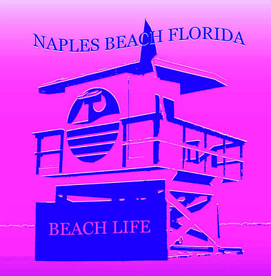 Royalty-Free and Rights-Managed Images - Naples Beach Florida by David Lee Thompson