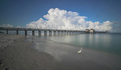 Studio Grafika Science - Naples Pier 2020 by Joey Waves