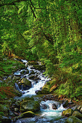 Amy Weiss - Natural Landscape Forest Water Stream Relaxing Environment by Anand Purohit