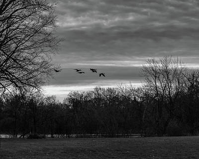 Landscapes Royalty-Free and Rights-Managed Images - Nature In Bw by Steve Bell