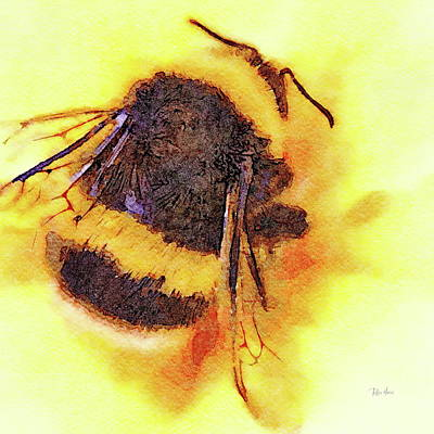 Painting - Nectar Lover by Russ Harris