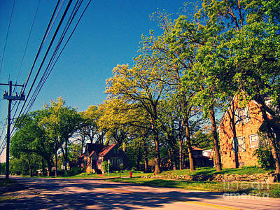 All Black On Trend - Neighborhood Trees - Cross Process by Frank J Casella