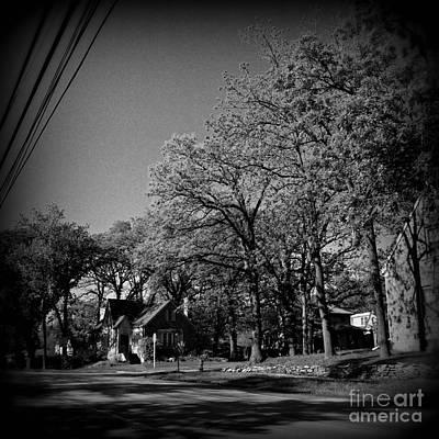 Frank J Casella Royalty-Free and Rights-Managed Images - Neighborhood Trees - Holga-ish by Frank J Casella