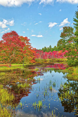 Kitchen Mark Rogan - New England fall foliage peak colors at Stillwater River in Sterling, Massachusetts by Juergen Roth