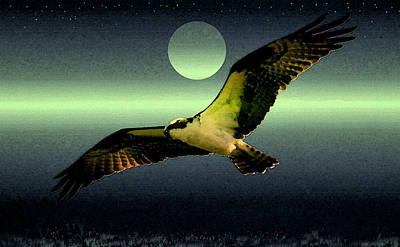 Gaugin Rights Managed Images - Night hunt over the glades Royalty-Free Image by David Lee Thompson
