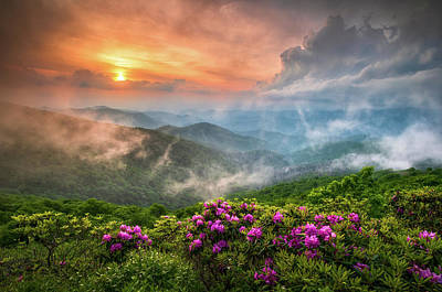 Rowing - North Carolina Blue Ridge Parkway Spring Appalachian Mountains NC by Dave Allen