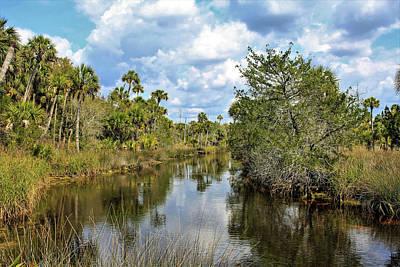 Unicorn Dust - North Florida Nature by David Beard