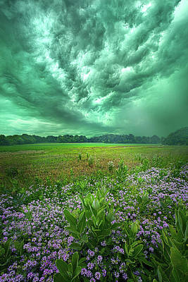 Royalty-Free and Rights-Managed Images - Not Yet Fallen by Phil Koch