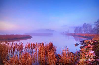 Royalty-Free and Rights-Managed Images - November misty morning 2 by Veikko Suikkanen