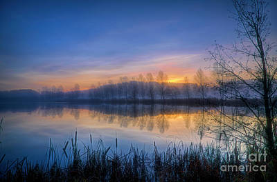 Royalty-Free and Rights-Managed Images - November misty morning 4 by Veikko Suikkanen