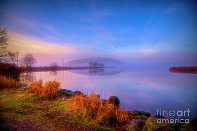 Royalty-Free and Rights-Managed Images - November misty morning 5 by Veikko Suikkanen
