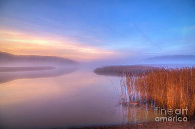 Royalty-Free and Rights-Managed Images - November misty morning by Veikko Suikkanen