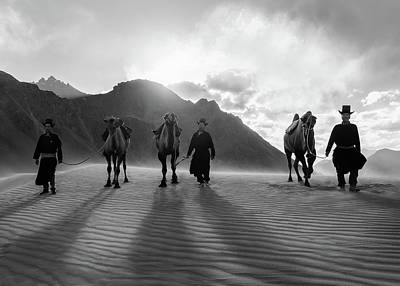 Achieving - Nubra Valley camels by Murray Rudd