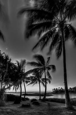 Rabbit Marcus The Great - Oahu HI Ko Olina Lagoon Pool 1 Palm Trees B W Aulani Beach Cove Seascape Art by Reid Callaway