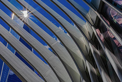 Rabbit Marcus The Great - Oculus and World Trade Center NYC by Robert Ullmann