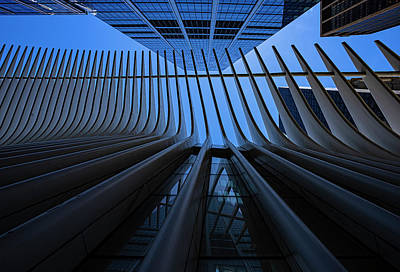 Rabbit Marcus The Great - Oculus Center and High Rises NYC by Robert Ullmann