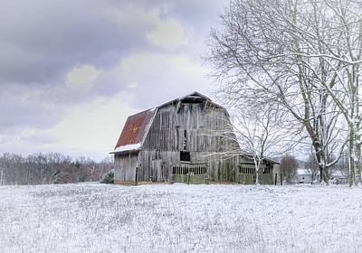 Animal Portraits - Old Barn in Snowy Field by Douglas Barnett