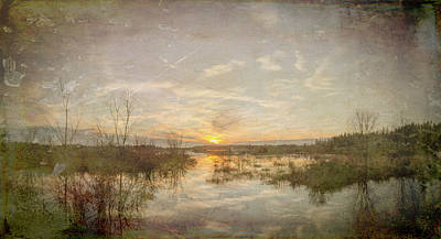 Photograph - Old Bog New Sunset by Beth Sawickie