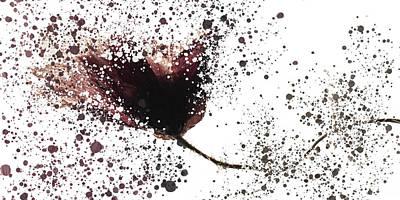 Mannequin Dresses - Old floating poppy exploded by Al Fio Bonina