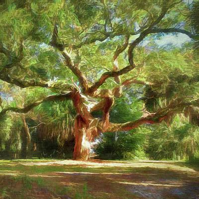 Digital Art - Old Live Oak by Debbie Smith