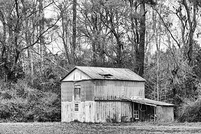 Fruits And Vegetables Still Life - Old Metal Barn in Craven County North Carolina by Bob Decker
