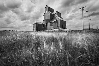 Catch Of The Day - Old Rural Elevator in Black and White by Matt Hammerstein