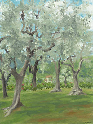 Painting - Olive grove by Constanza Weiss