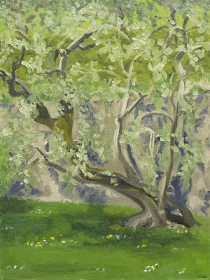 Painting - Olive tree by Constanza Weiss