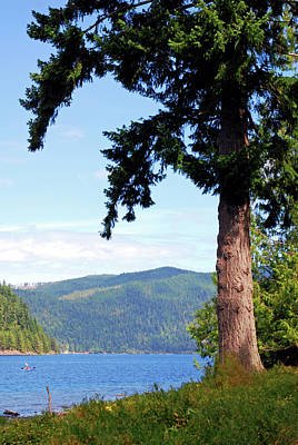Advertising Archives - On the Lake. Olympic National Park by Connie Fox