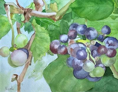 Royalty-Free and Rights-Managed Images - On the Vine by Nicole Curreri
