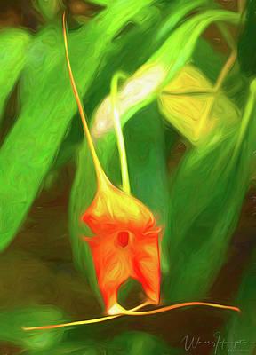 Digital Art - Orchid - 0824 by Wally Hampton