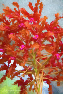 Digital Art - Orchid - 0843 by Wally Hampton