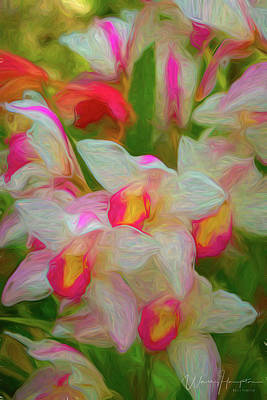 Digital Art - Orchid - 0855 by Wally Hampton