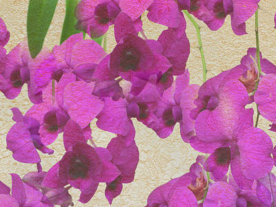 Whimsical Flowers - Orchid With Texture by Aimee L Maher ALM GALLERY