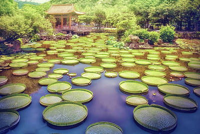 Photo Royalty Free Images - Oriental Fantasy Garden-Photography by Sungei Park in Taipei, Taiwan-2 Royalty-Free Image by Artto Pan