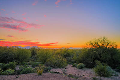 Mark Myhaver Photo Rights Managed Images - Oro Valley Evening h2030 Royalty-Free Image by Mark Myhaver