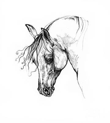 Animals Drawings - Ostragon by Angel Ciesniarska