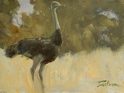 Painting - Ostrich by Ron Wilson