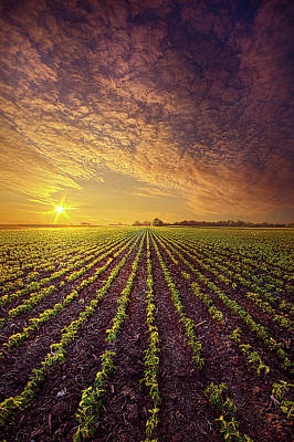Abstract Stripe Patterns - Our Way Forward by Phil Koch
