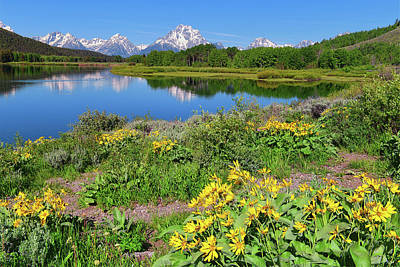 Photograph - Oxbow Spring by Greg Norrell