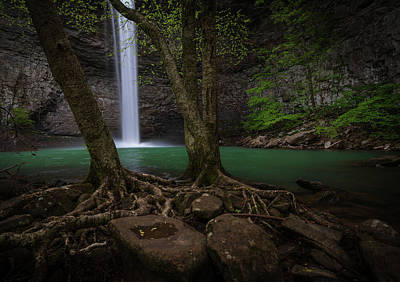 Photograph - Ozone Falls by Christopher Nelson
