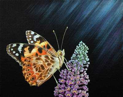 Painting - Painted Lady Butterfly by Craig Austin