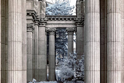 Winter Animals - Palace Of Fine Arts Infrared by Bill Gallagher