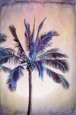 Royalty-Free and Rights-Managed Images - Palm Fiction by Az Jackson